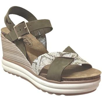 Schoenen Dames Sandalen / Open schoenen Plakton Plantio Kaki nubuck