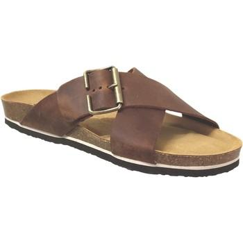 Schoenen Heren Leren slippers Plakton Bate Bruin leer