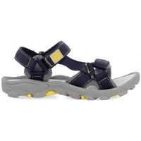 Schoenen Kinderen Outdoorsandalen Gioseppo SANDALIAS NIÑO  DUVAL 59029 Grijs