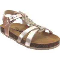 Schoenen Meisjes Sandalen / Open schoenen Plakton Cross Platina