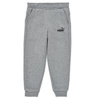 Textiel Jongens Trainingsbroeken Puma ESSENTIAL SLIM PANT Grijs