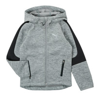 Textiel Jongens Sweaters / Sweatshirts Puma EVOSTRIPE FZ HOODED JACKET Grijs
