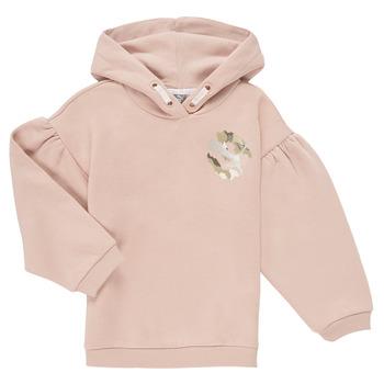 Textiel Meisjes Sweaters / Sweatshirts Puma ALPHA HOODIE Roze