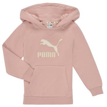Textiel Meisjes Sweaters / Sweatshirts Puma T4C HOODIE Roze