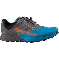 Schoenen Heren Running / trail Dynafit Alpine Grau