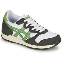 Schoenen Lage sneakers Onitsuka Tiger ALVARADO Groen / Zwart / Wit