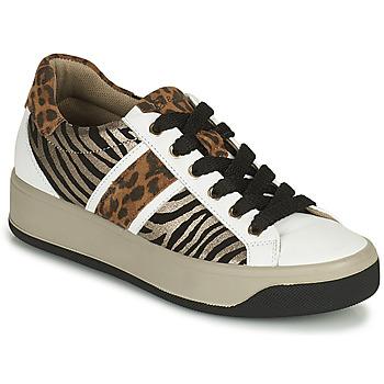 Schoenen Dames Lage sneakers IgI&CO DONNA AVA Wit / Bruin
