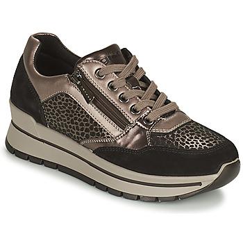 Schoenen Dames Lage sneakers IgI&CO DONNA ANISIA Zilver / Zwart