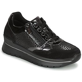 Schoenen Dames Lage sneakers IgI&CO DONNA ANISIA Zwart