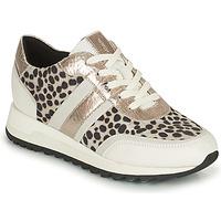 Schoenen Dames Lage sneakers Geox TABELYA Wit / Zwart / Zilver