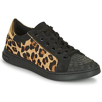 Schoenen Dames Lage sneakers Geox JAYSEN Zwart / Luipaard