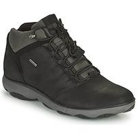 Schoenen Heren Laarzen Geox NEBULA Zwart