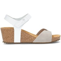 Schoenen Dames Sandalen / Open schoenen Interbios SANDALEN  5649 GRIJS