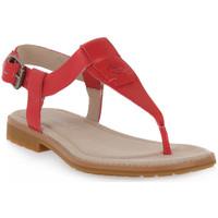 Schoenen Dames Sandalen / Open schoenen Timberland CHICAGO 2 THONG Rosa