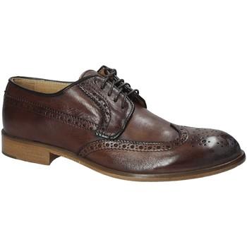 Schoenen Heren Derby Exton 5351 Bruin