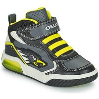 Schoenen Jongens Hoge sneakers Geox INEK Grijs / Groen