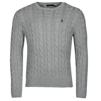 Textiel Heren Truien Polo Ralph Lauren SERINA Grijs