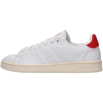 Schoenen Heren Lage sneakers adidas Originals FY8808 WHITE