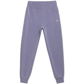 Textiel Dames Trainingsbroeken 4F Women's Sweatpants Grise