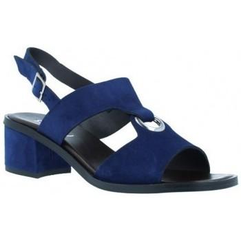 Schoenen Dames Sandalen / Open schoenen Plumers  Blauw
