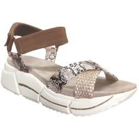 Schoenen Dames Sandalen / Open schoenen Bugatti 431-88181-6969 Beige