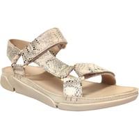 Schoenen Dames Sandalen / Open schoenen Clarks Tri sporty Beige
