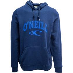 Textiel Heren Sweaters / Sweatshirts O'neill LM State Blauw