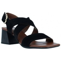 Schoenen Dames Sandalen / Open schoenen Alpe  Zwart