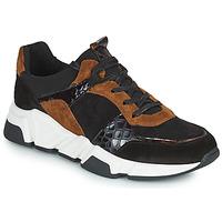 Schoenen Dames Lage sneakers Regard KENO Zwart / Bruin