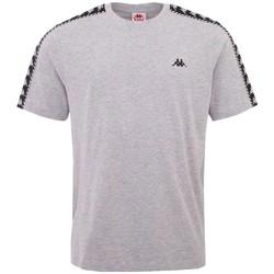 Textiel Heren T-shirts korte mouwen Kappa Ilyas T-Shirt Grise