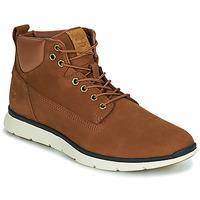 Schoenen Heren Hoge sneakers Timberland KILLINGTON CHUKKA Bruin