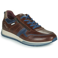 Schoenen Heren Lage sneakers Pikolinos CAMBIL Bruin / Blauw