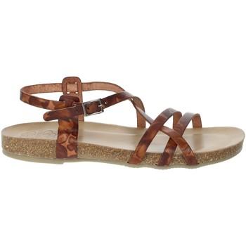 Schoenen Dames Sandalen / Open schoenen Porronet FI2615 Brown leather