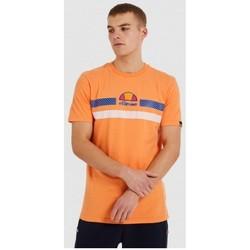 Textiel Heren T-shirts korte mouwen Ellesse CAMISETA CORTA HOMBRE  SHI09758 Oranje
