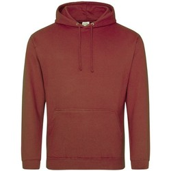Textiel Sweaters / Sweatshirts Awdis College Rood/Roest