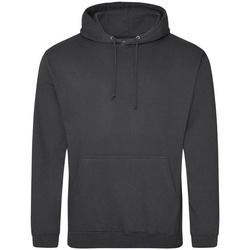 Textiel Sweaters / Sweatshirts Awdis College Haaiengrijs