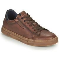 Schoenen Heren Lage sneakers Fluchos NIKO Bruin
