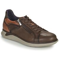 Schoenen Heren Lage sneakers Fluchos COOPER Bruin