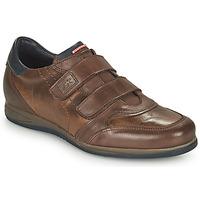 Schoenen Heren Lage sneakers Fluchos DANIEL Bruin