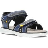 Schoenen Jongens Sandalen / Open schoenen Geox SANDALEN  MARATEA J15DRA MARINE