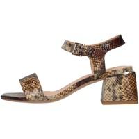 Schoenen Dames Sandalen / Open schoenen Alma Blue V21BL8700 BEIGE