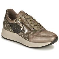 Schoenen Dames Lage sneakers NeroGiardini GIROMONO Goud
