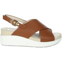Schoenen Dames Sandalen / Open schoenen Lumberjack SWB5906-001 Brown leather