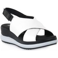 Schoenen Dames Sandalen / Open schoenen Pepe Menargues TRIPOLI BIANCO Bianco