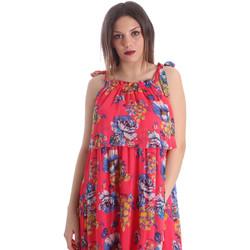 Textiel Dames Jurken Gaudi 911FD15039 Roze