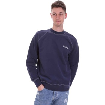 Textiel Heren Sweaters / Sweatshirts Dickies DK0A4XAANV01 Blauw