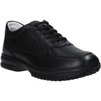 Schoenen Heren Lage sneakers IgI&CO 7119000 Zwart