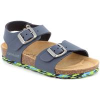 Schoenen Kinderen Sandalen / Open schoenen Grunland SB1644 Blauw