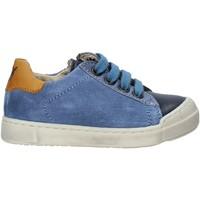 Schoenen Kinderen Lage sneakers Naturino 2014863 02 Blauw