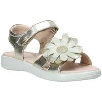 Schoenen Meisjes Sandalen / Open schoenen Naturino 502728 04 Anderen